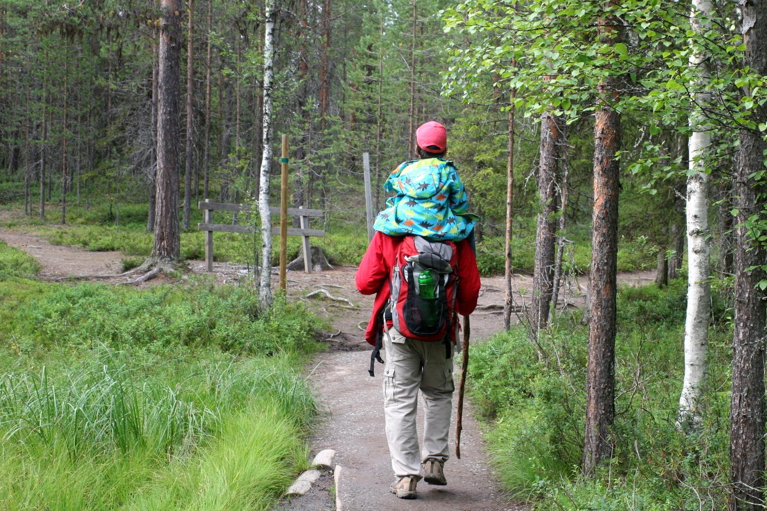 Pieni Karhunkierros lasten kanssa. Pieni pätkä, ihan tosi pieni, mentiin näin. Kun mainitsin, ettei tästä lasketa kävelykilometrejä, hyppäsi lapsi sadan metrin jälkeen alas ja jaksoikin omin jaloin.