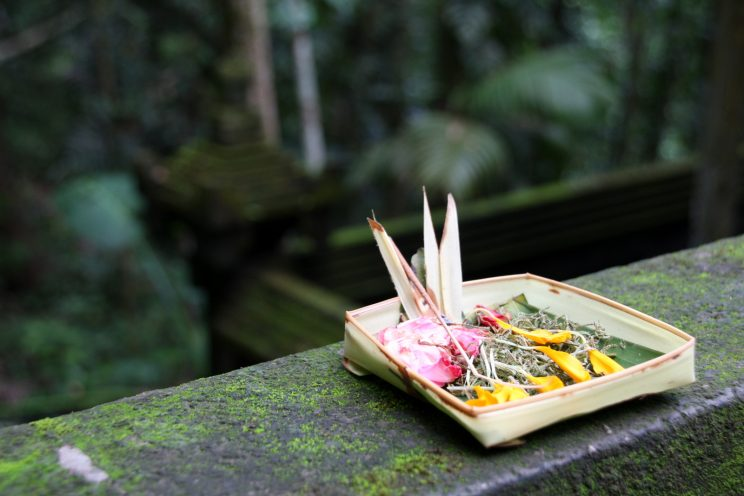 Kuvia Balilta. Uhrilahja jumalille Goa Gajah -temppelillä.