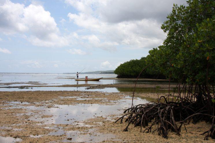 Kuvia Balilta. Nusa Lembongan, Mangrove Beach.