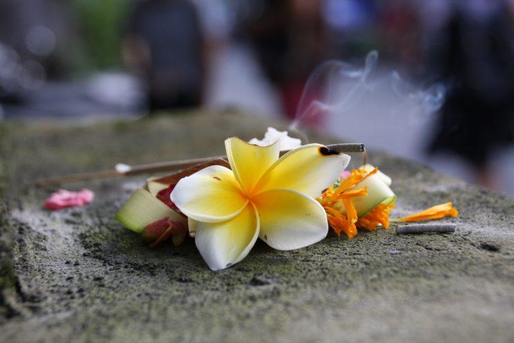 Kuvia Balilta. Ubud, yksityiskohta kadun laidasta.