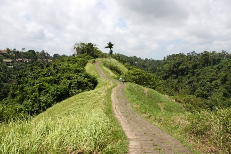 Kuvia Balilta. Ubud, Campuhan Ridge Walk.