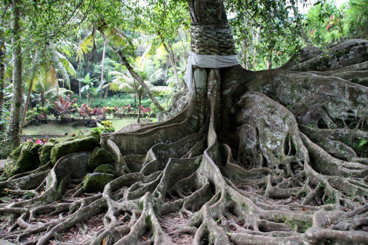 Retkiä Ubudista - Goa Gajah